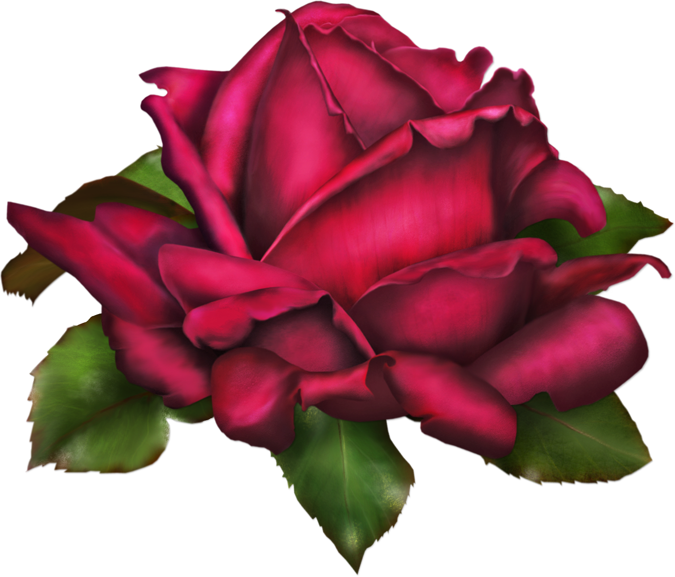 Rosas png png. Rose art gallery yopriceville