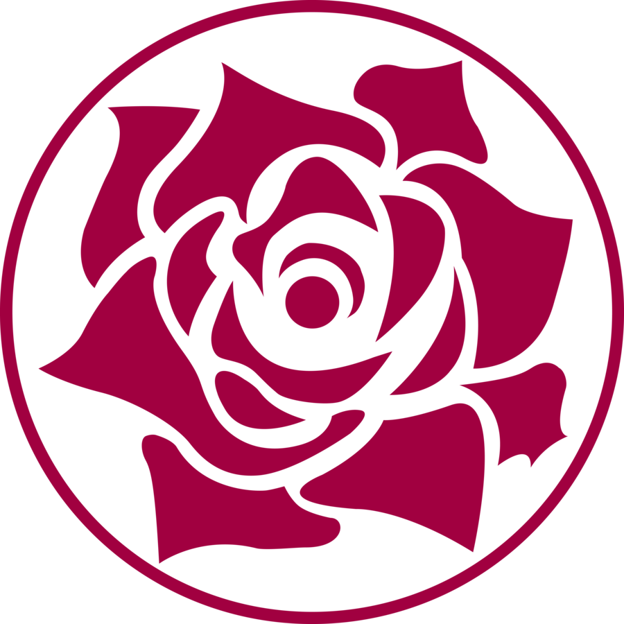 Outline vector rose. Png group image rachel