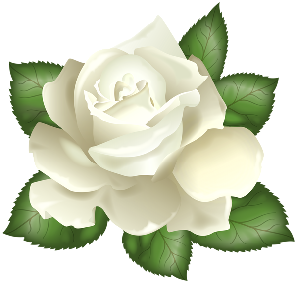 Rosas vector rose. Pin by dawndonyou on