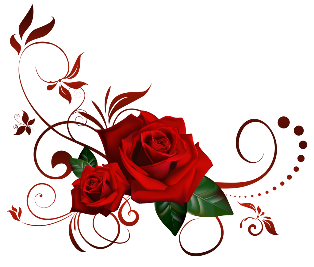 Roses png. Decor by lyotta on picture transparent