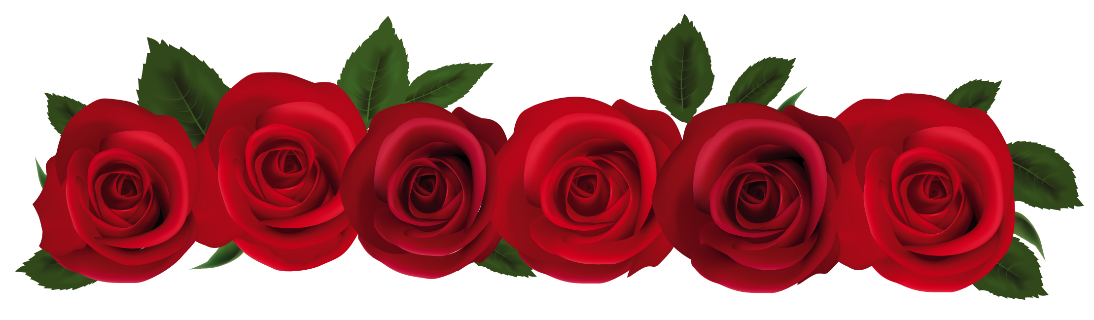 Rose border png. Clip art free clipart