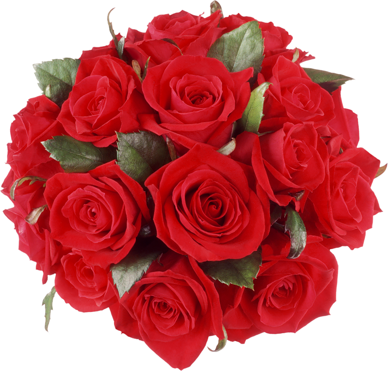 Rose bouquet png. Red roses clipart gallery