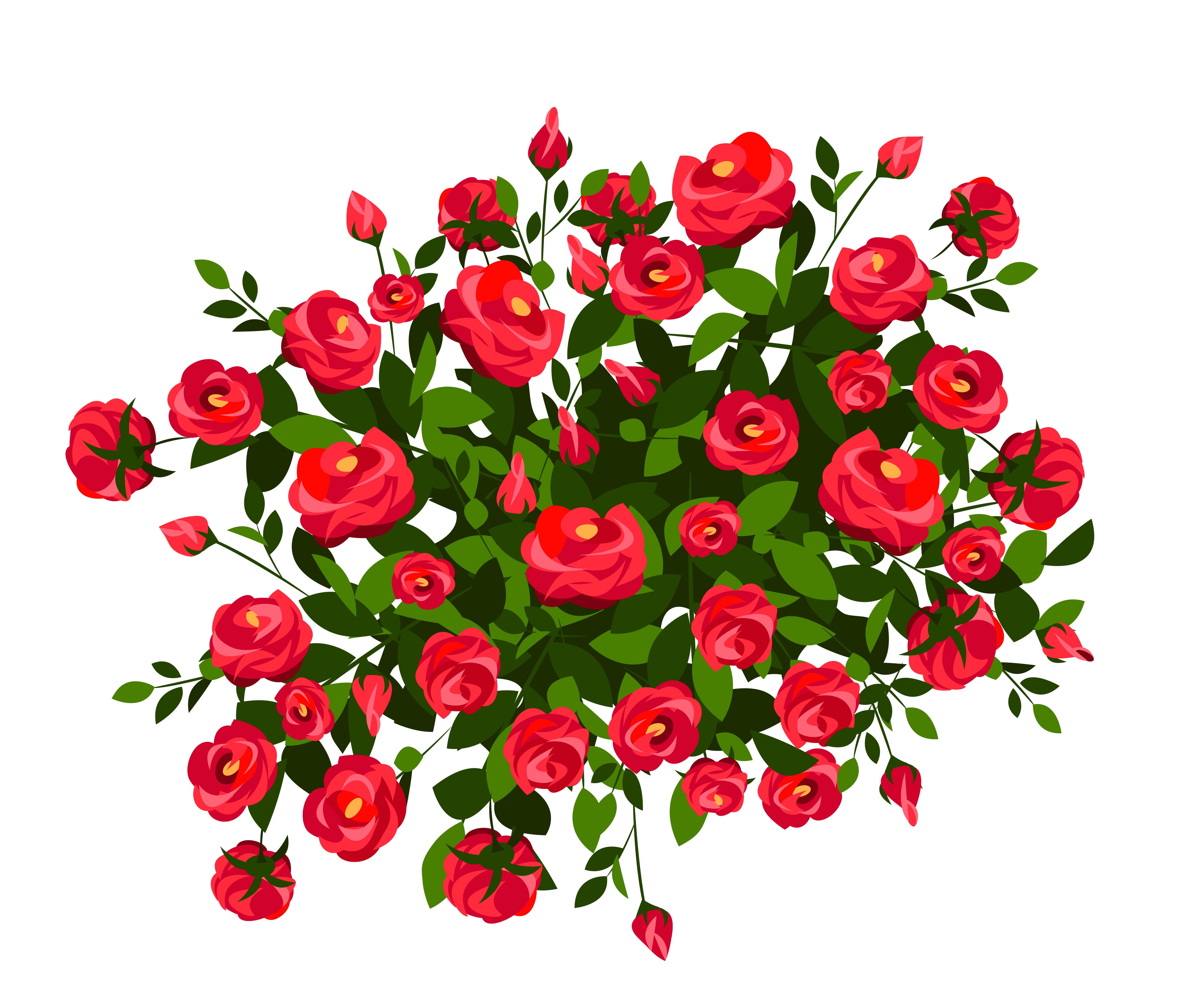 Rose bush png. Red clipart image gallery