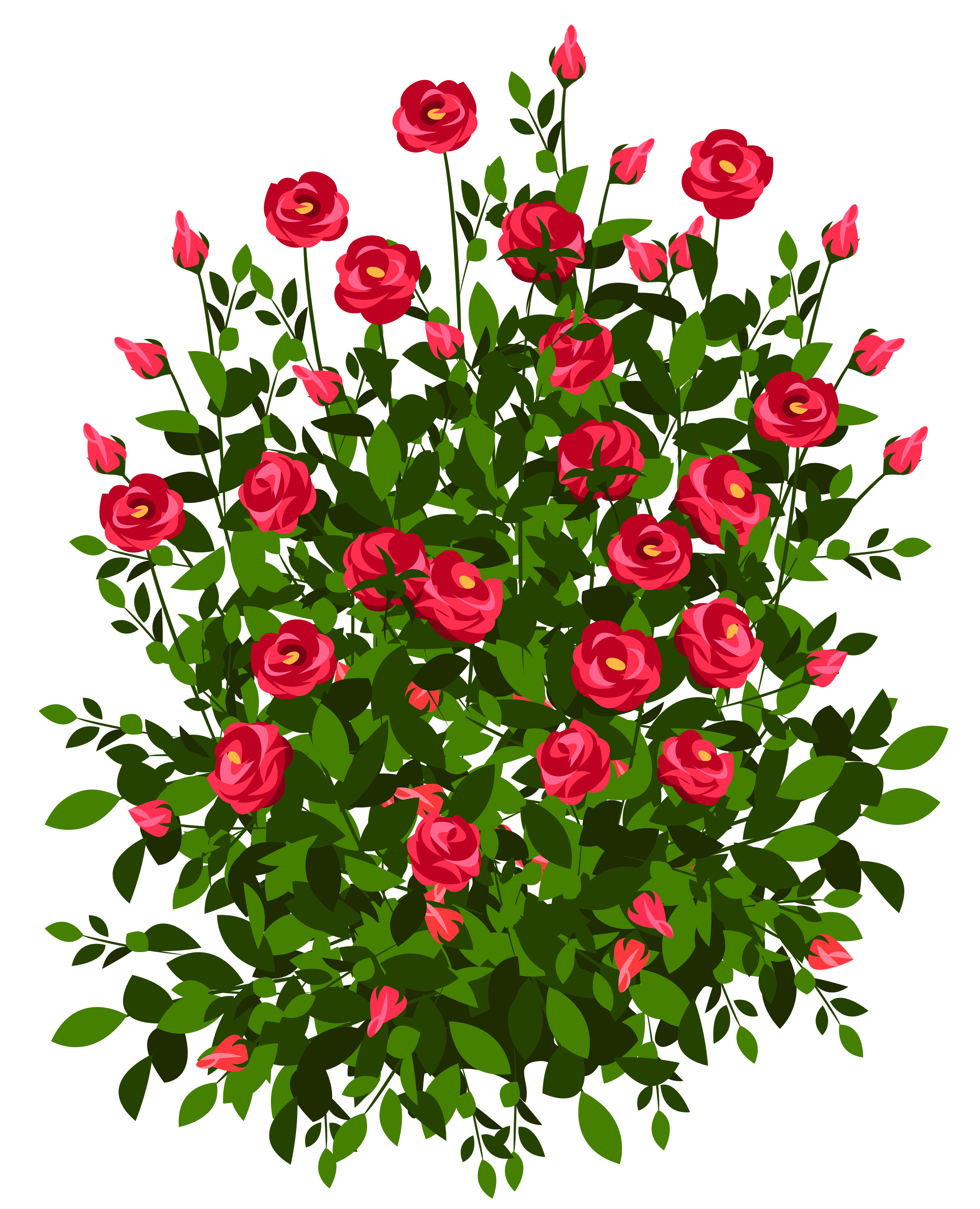 Rose bushes png. Red bush clipart picture