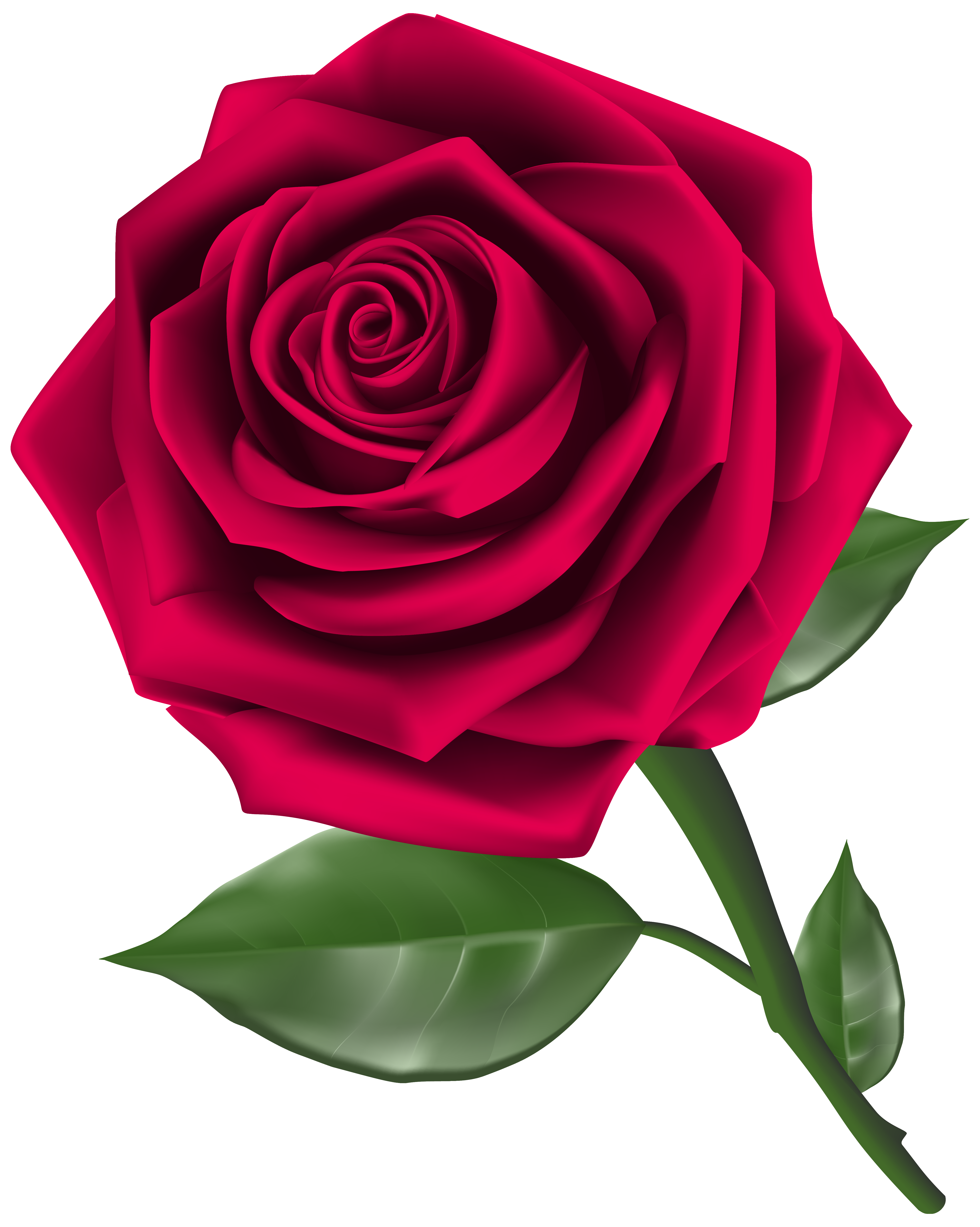 Rose clipart. Steam png image gallery