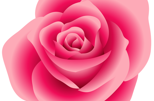 Rose clipart baby. Color for ff nike