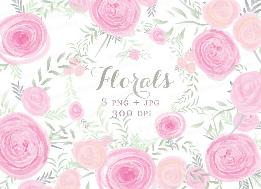 Rose clipart baby. Watercolor flowers pink posies