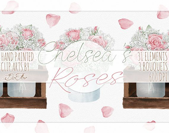 Rose clipart baby. Pink s breath crate