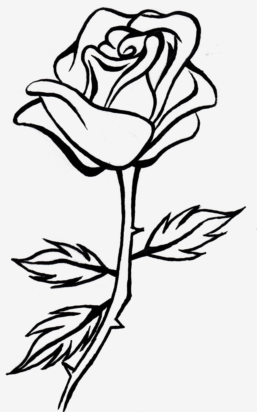 Roses clipart black and white. Rose drawing at getdrawings