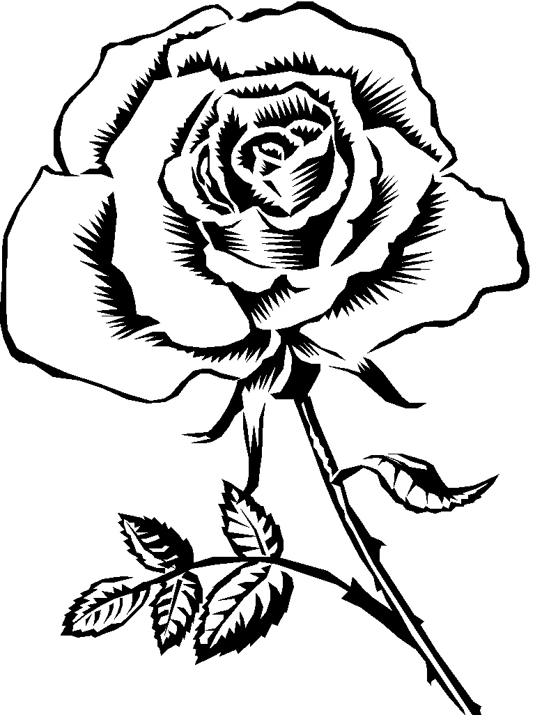 Roses clipart black and white. Knumathise rose images