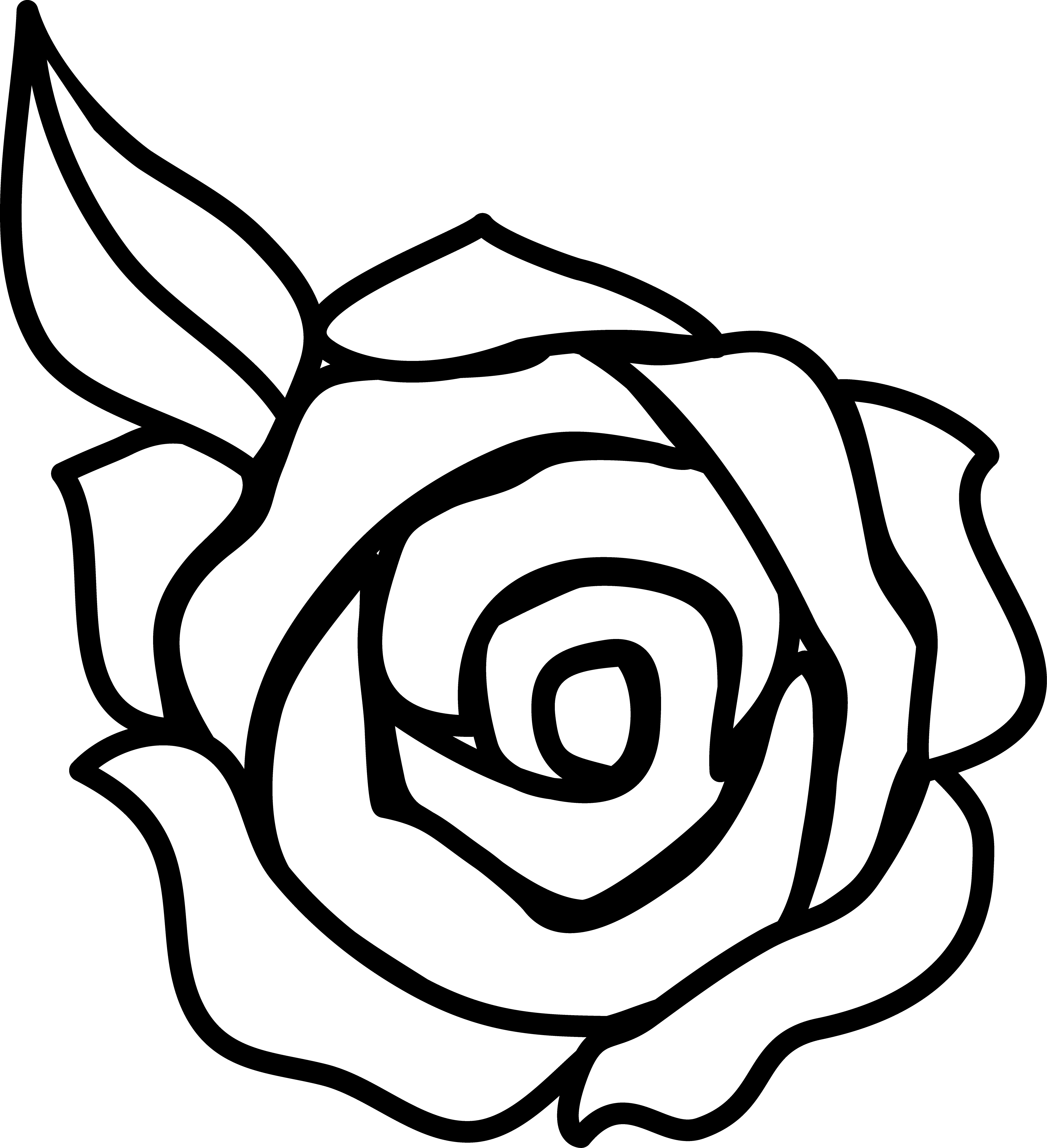 Black and white rose. Blossom drawing easy banner download