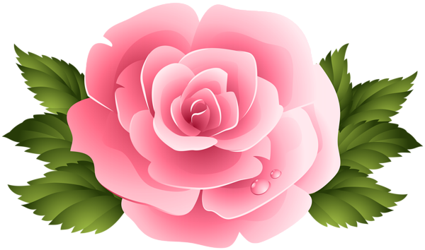 Rose clipart pink rose. Png image gallery yopriceville