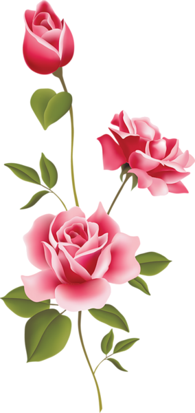 Roses clip art spring. Rose clipart pink rose picture royalty free library