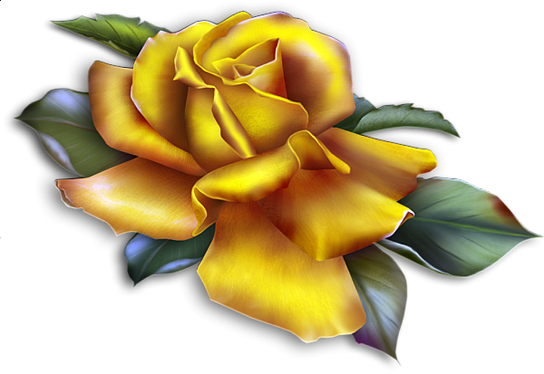 Rose clipart yellow rose. Beautiful paper roses pinterest