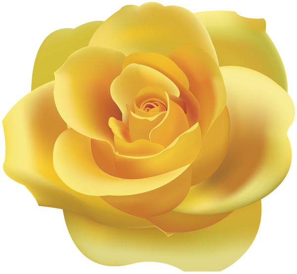 Rose clipart yellow rose. Png clip art gallery