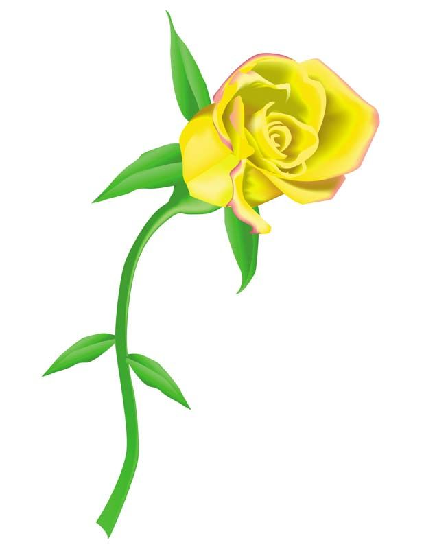 Rose clipart yellow rose. Blooming animated roses leaves