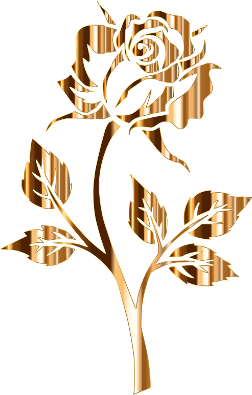 Rose gold flower png. Clipart silhouette no background