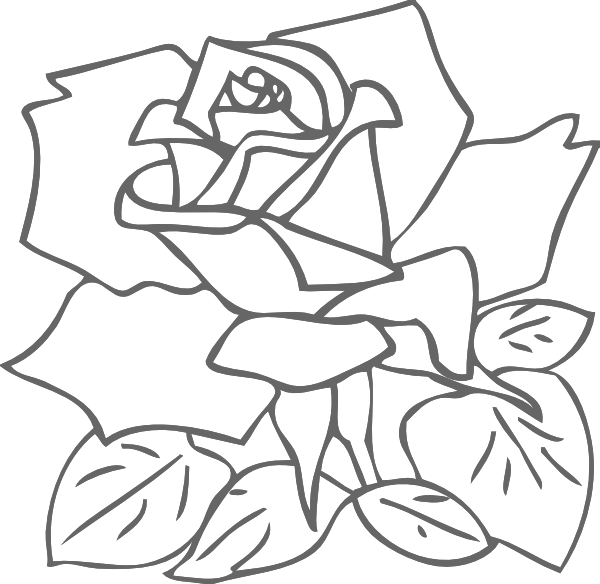 Bud Drawing Outline Rose Transparent Png Clipart Free Download