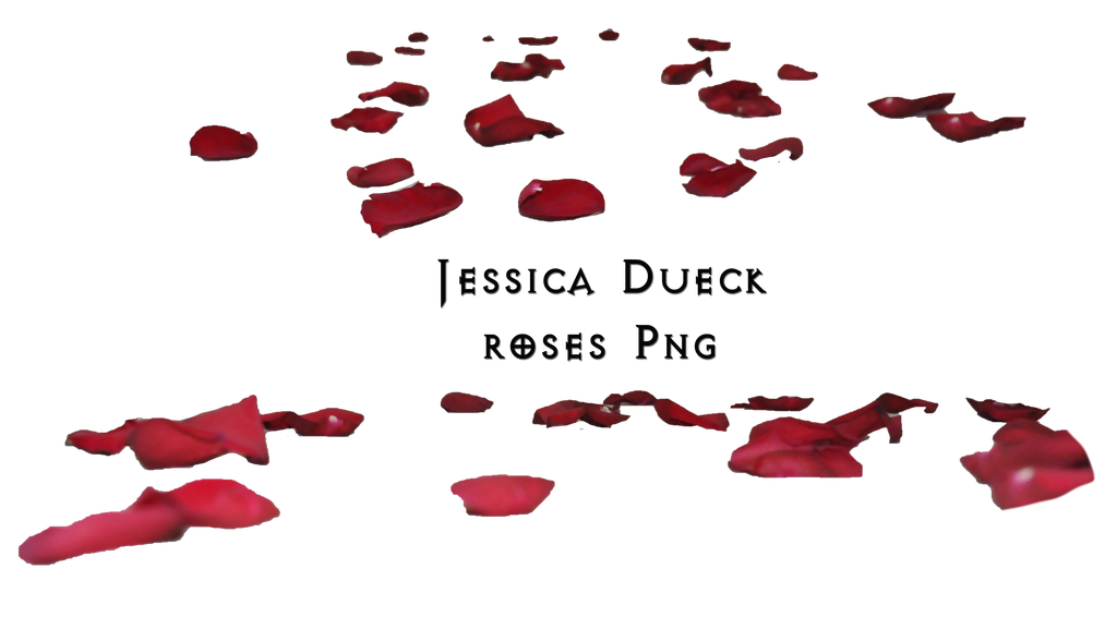 Red rose petals png. Roses i by starscoldnight