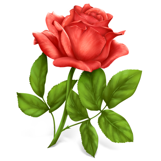 Rose .png png. Flower plant icon