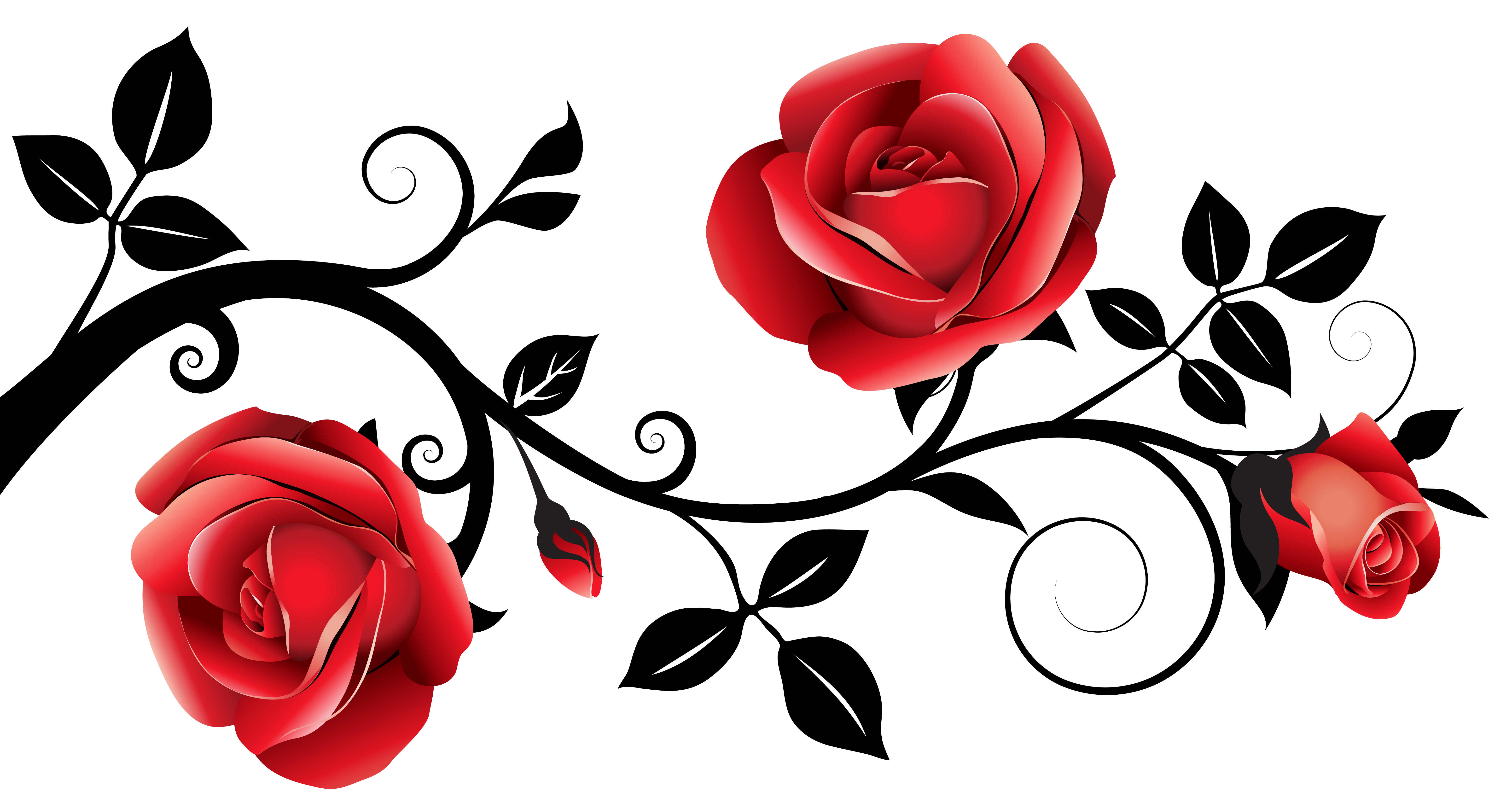 Rose thorns border png. Red and black decorative