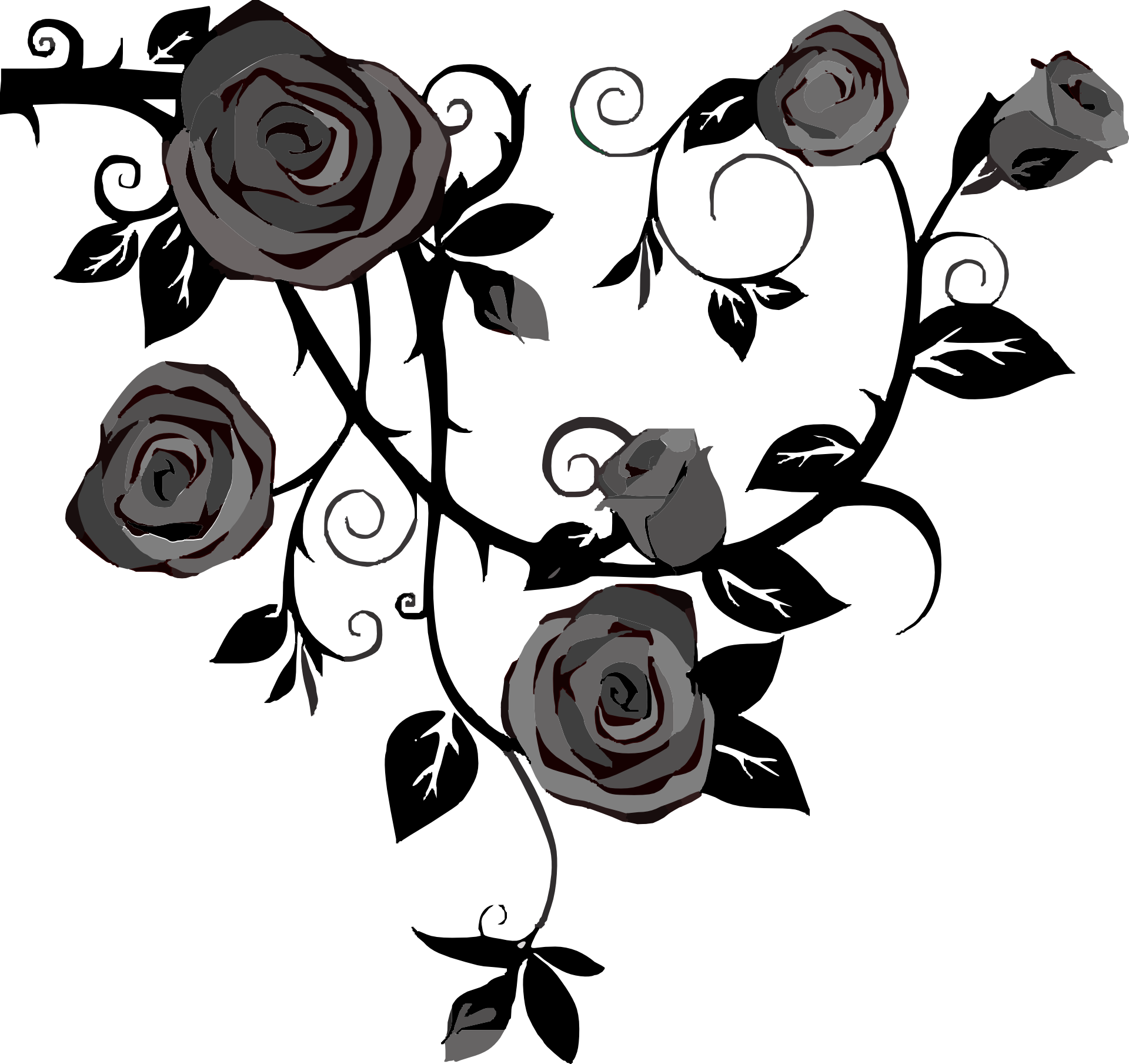 Rose with thorns png. Vine drawing spines and