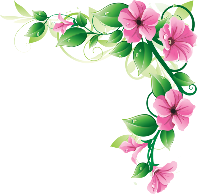 Roses border png. Flowers borders transparent images