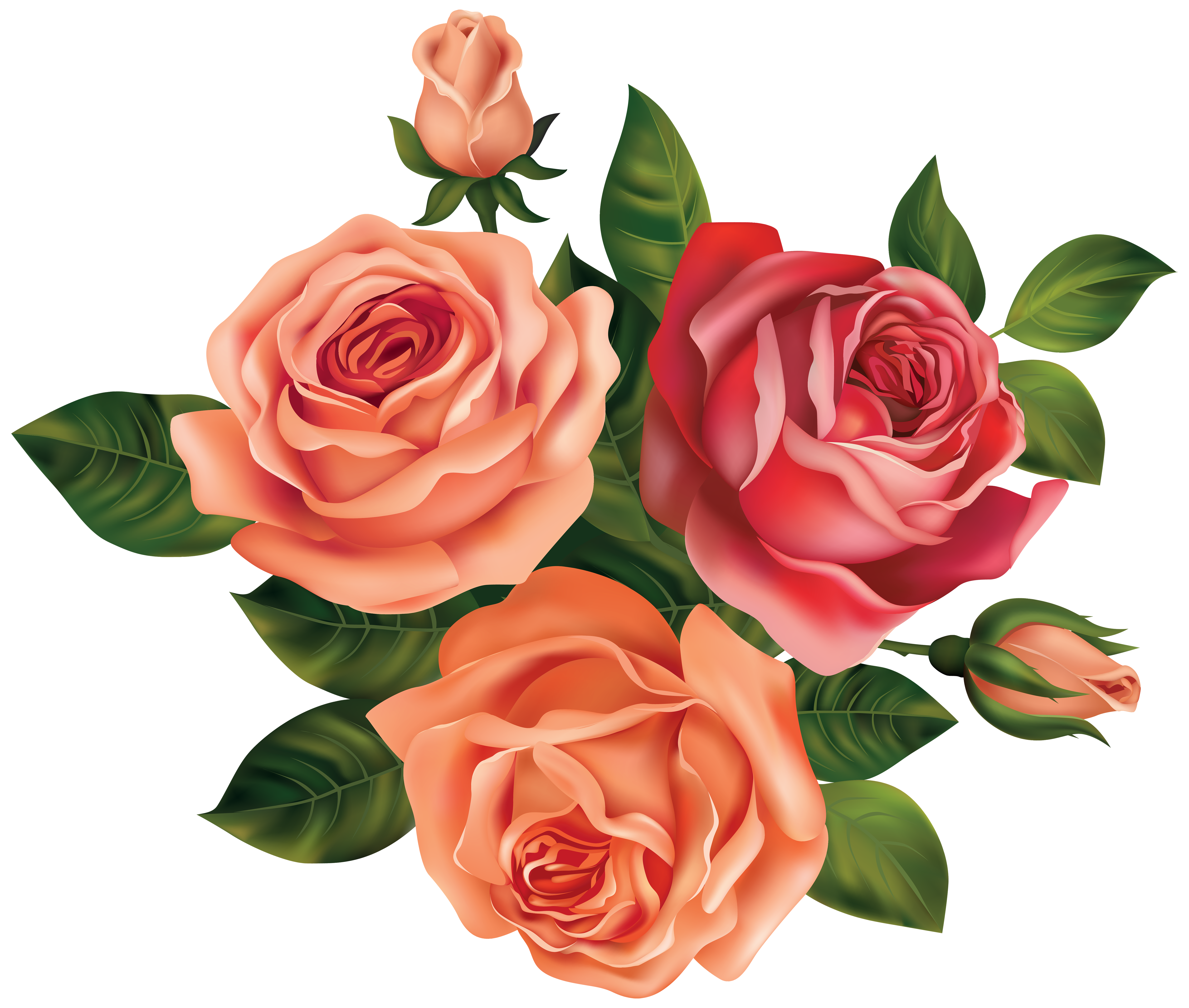 Roses clipart. Beautiful image gallery yopriceville
