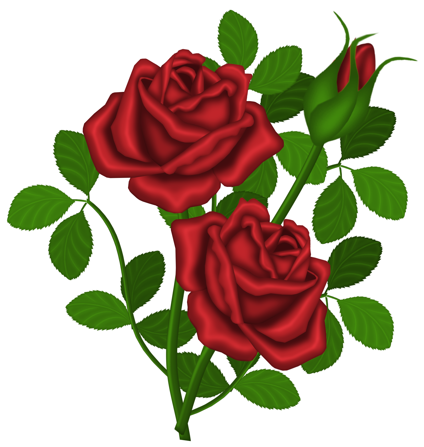 Roses clipart. Red png picture gallery