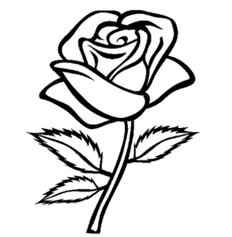Roses clipart black and white. Flower stem template outstanding
