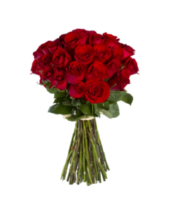 Roses clipart bunch. Rose png peoplepng com