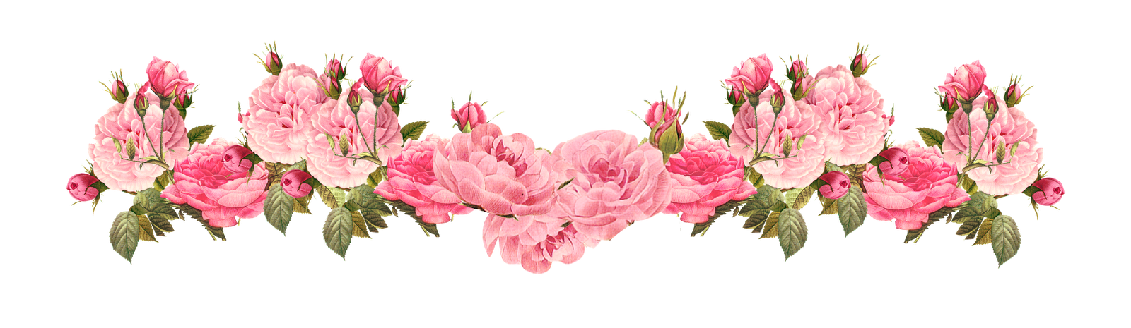 Roses clipart shabby chic. Vintage pink free rose