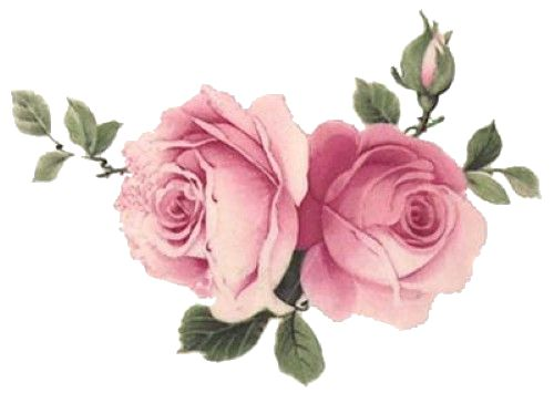 Roses clipart shabby chic. Best images on