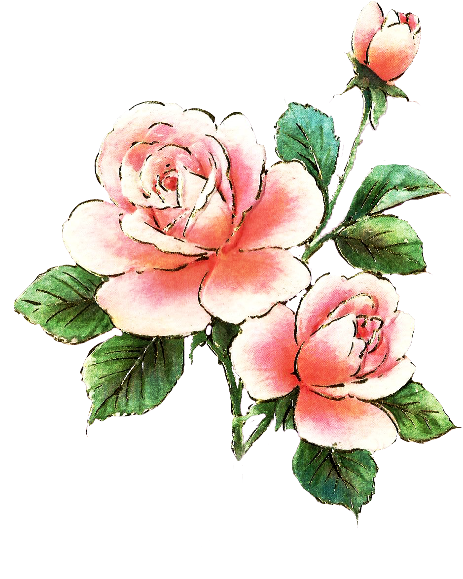 Roses clipart bed. Free art download clip