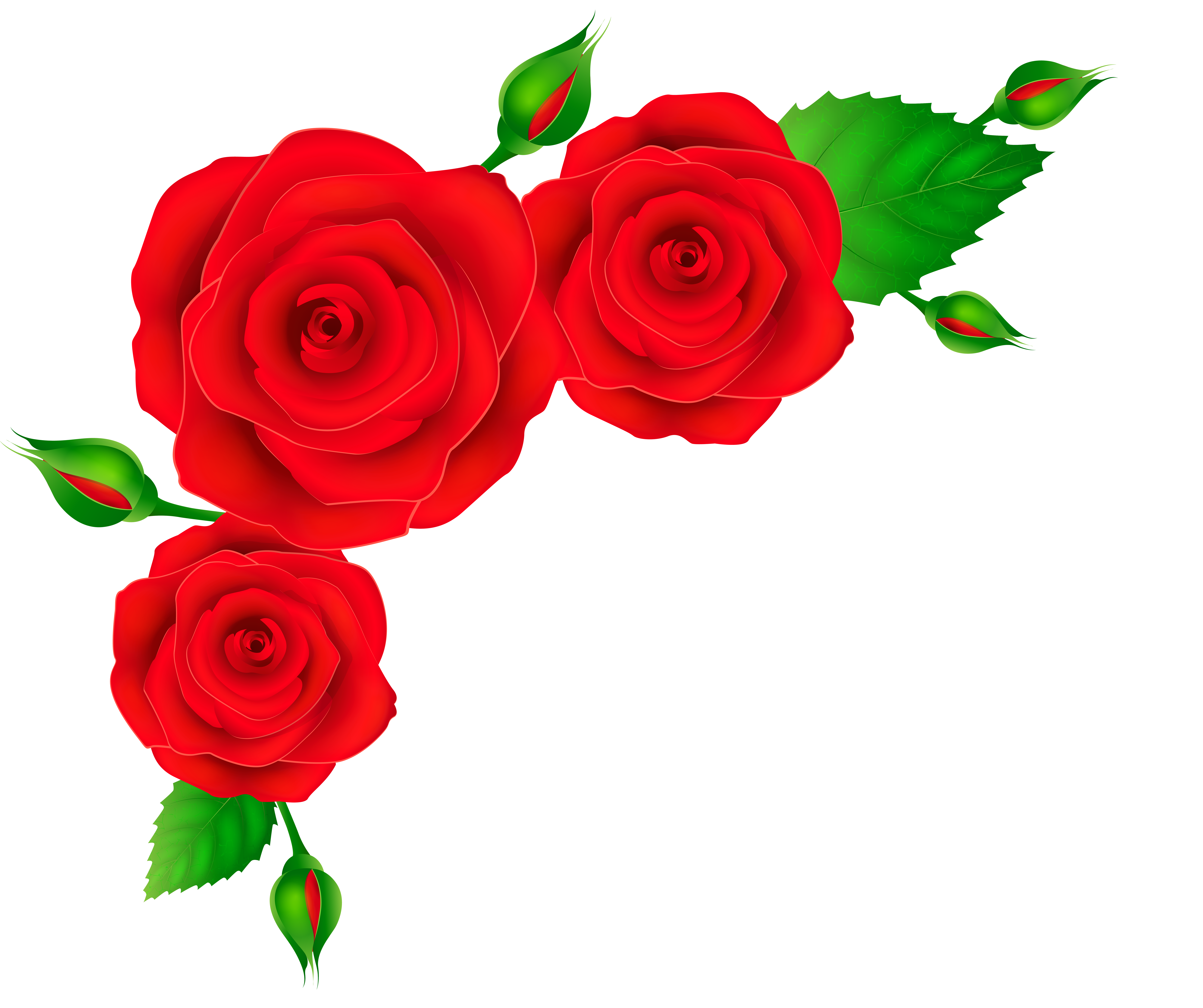Roses clipart stick. Free rose corner cliparts