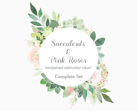 Roses clipart succulent. Watercolour succulents and pink