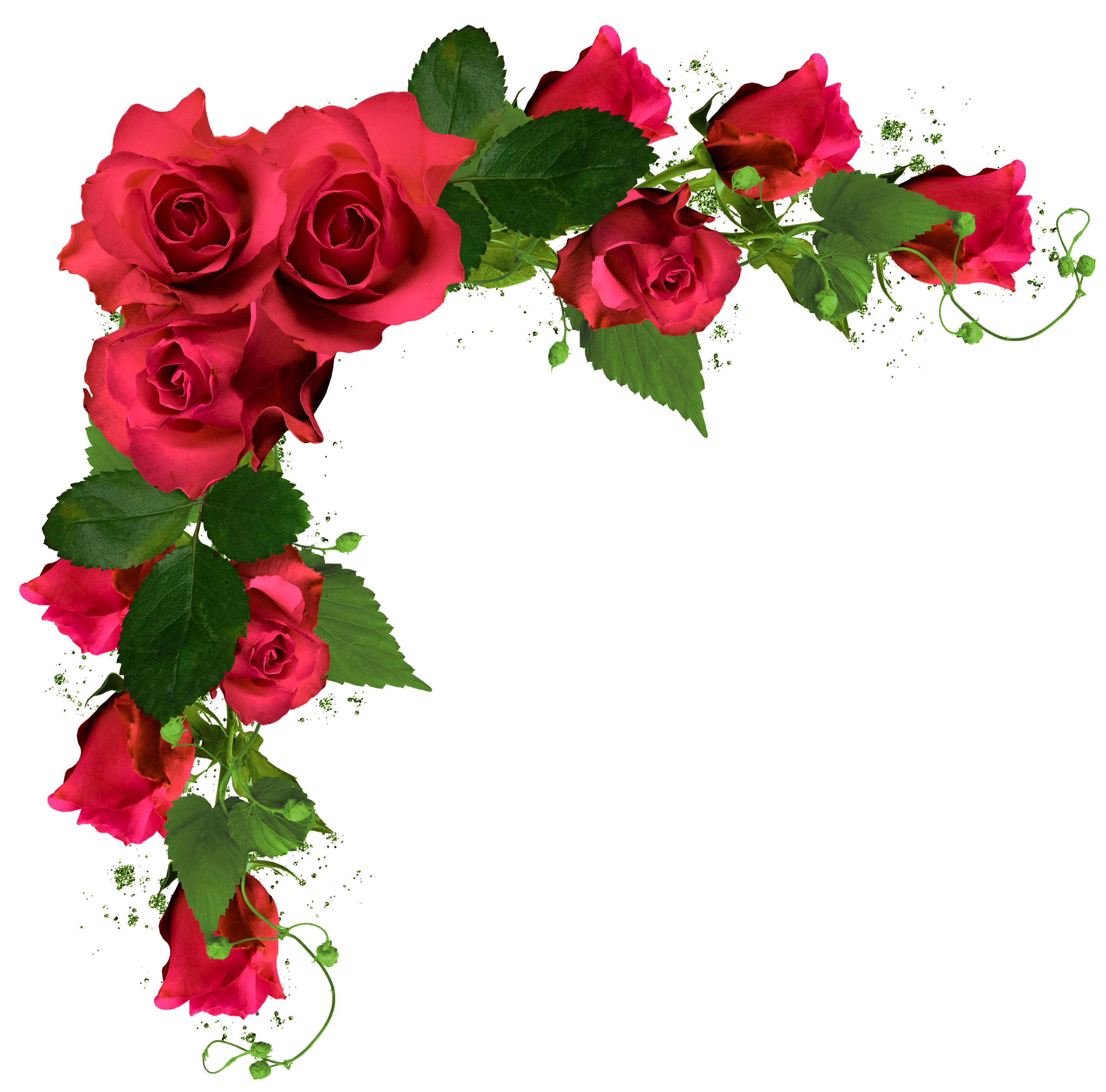 Corner transparent red floral. Beautiful decor with roses