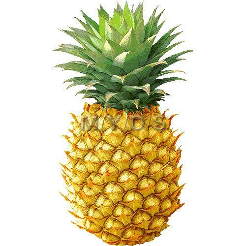 Round pineapple. Clipart free clip art