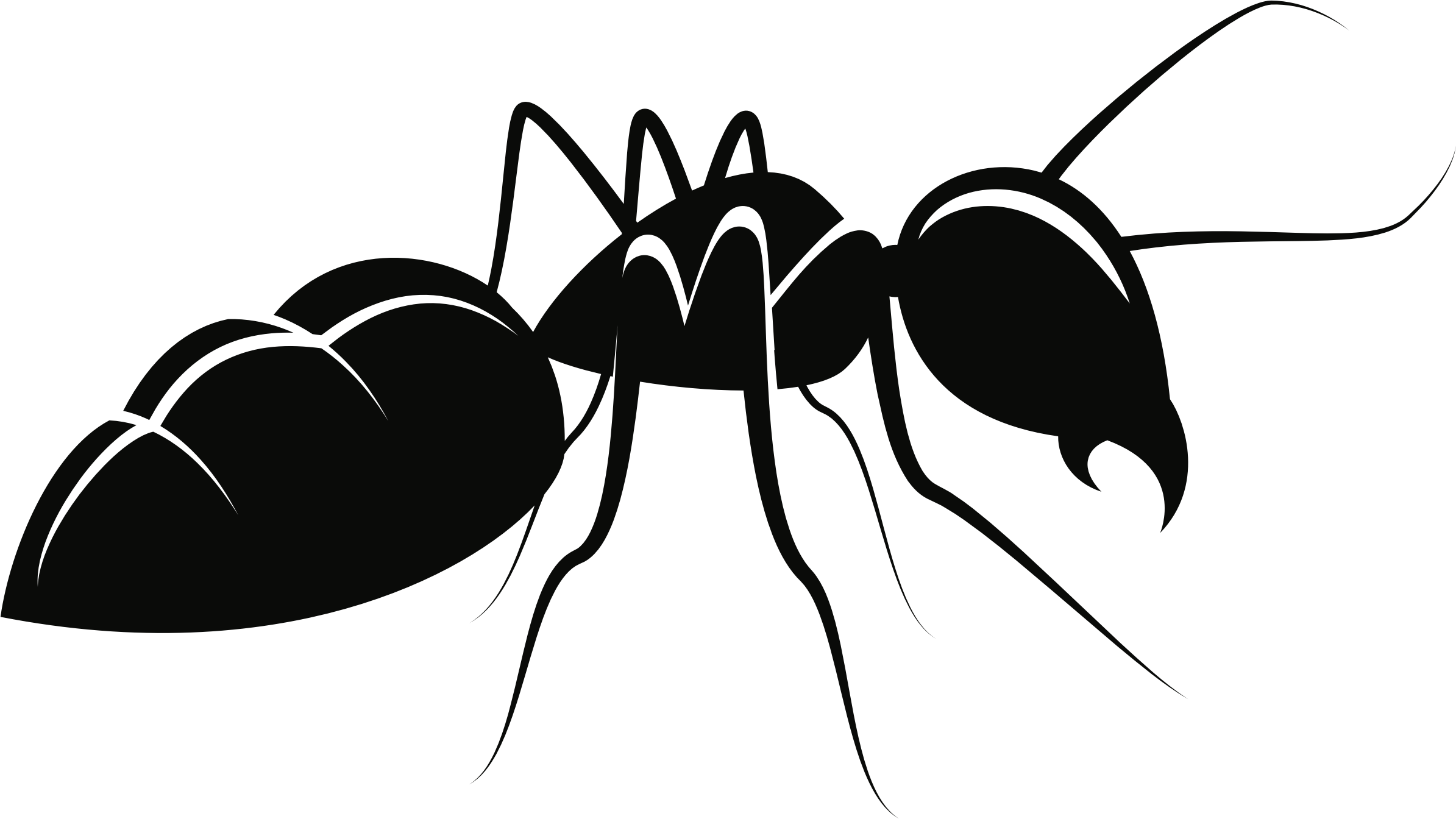 Row clipart ant. Clip art free ants