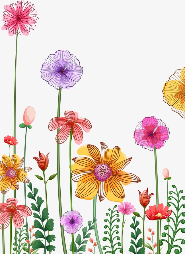 Row clipart sunflower. Flowers line png image
