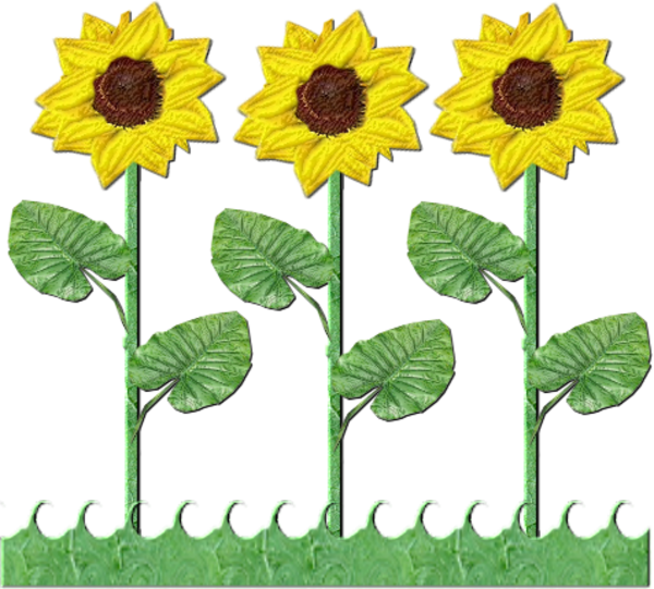 Row clipart sunflower. Flowers of sunflowers free