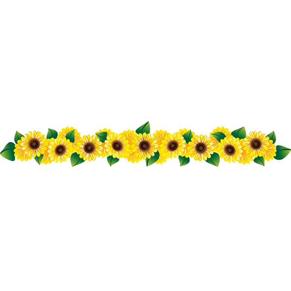 Common sunflower clip art. Row of flowers png vector royalty free