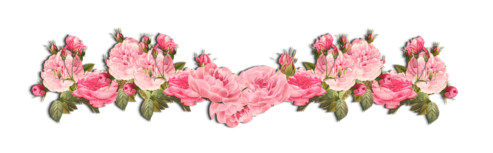Row of flowers png. Xxlonely heartxx ouo deviantart