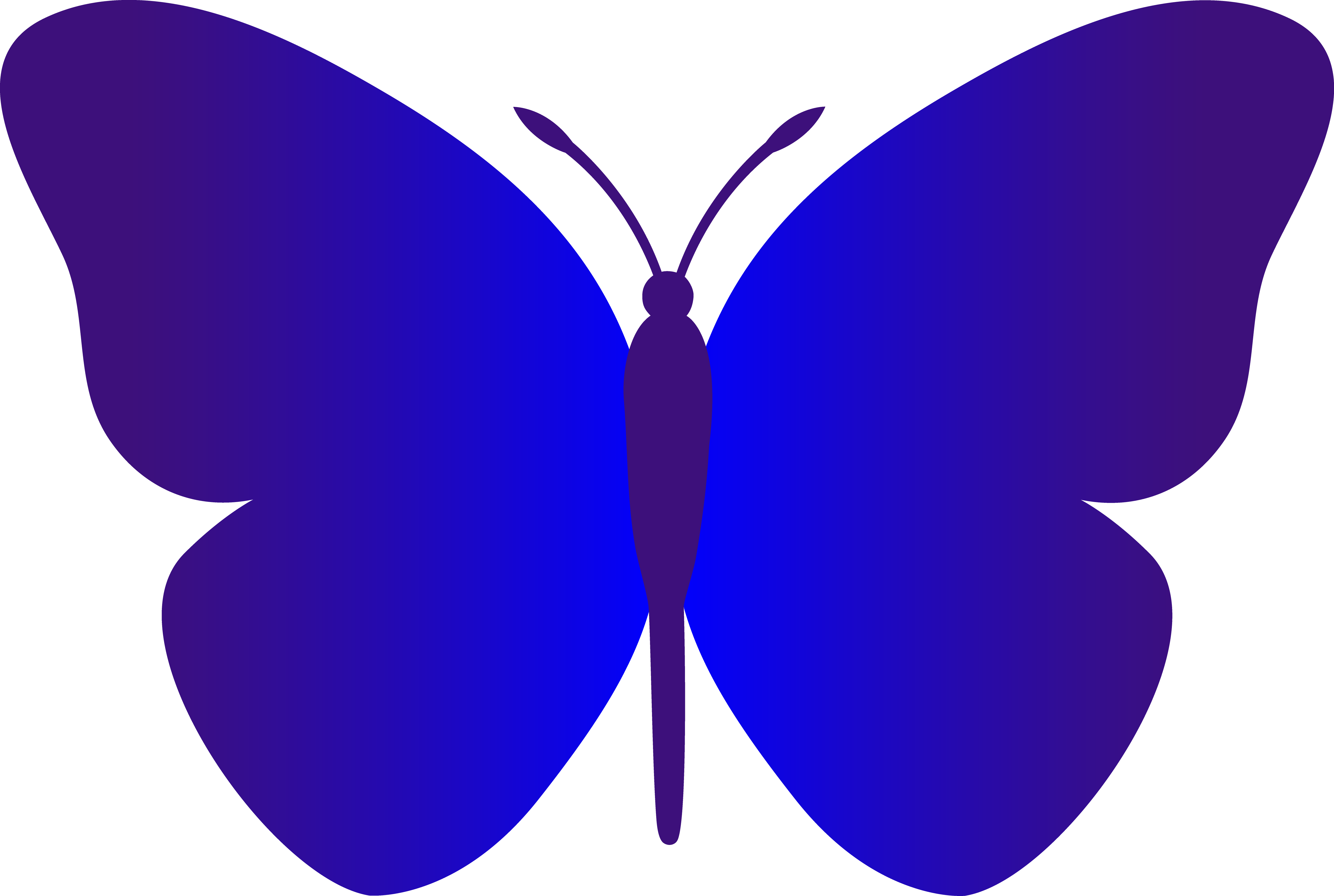 Royal drawing butterfly. Collection of free butterflies