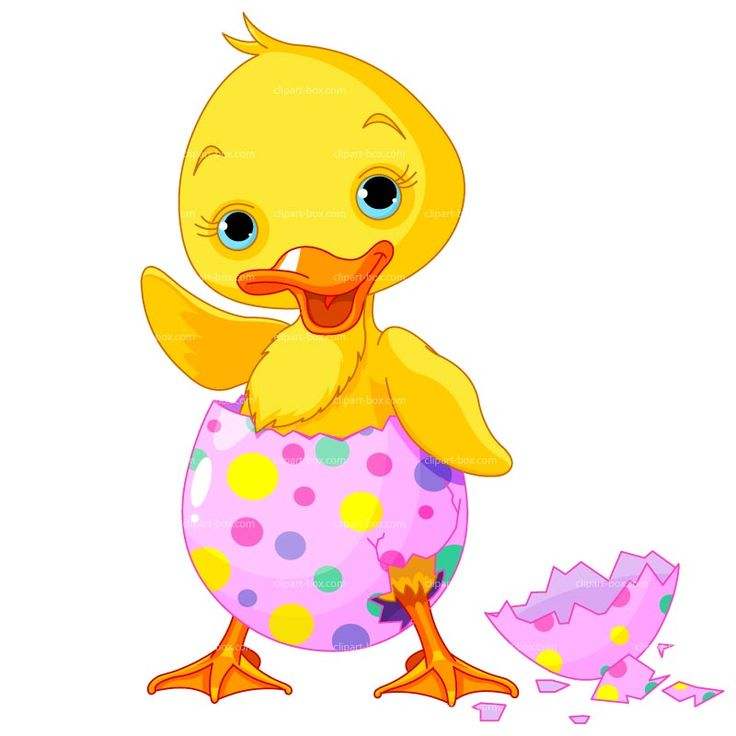 Rubber ducky clipart spring. Best ducks images