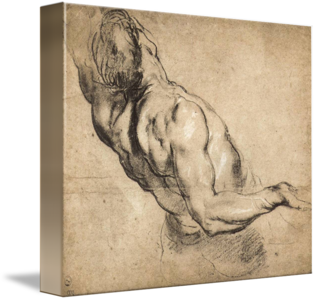 Rubens drawing. Study of man s