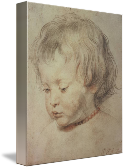 Rubens drawing child. Portrait of a boy
