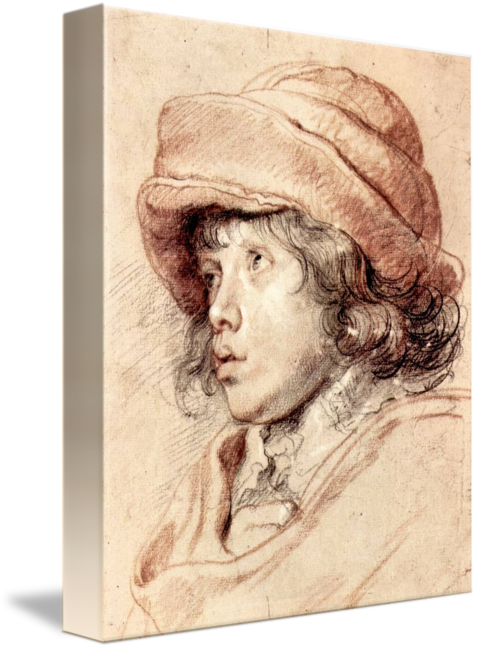 Rubens drawing head. Son nicholas by peter