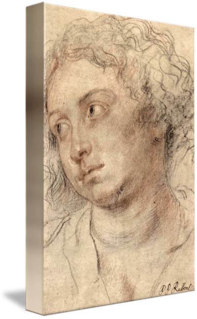 Rubens drawing portrait. Head of a woman