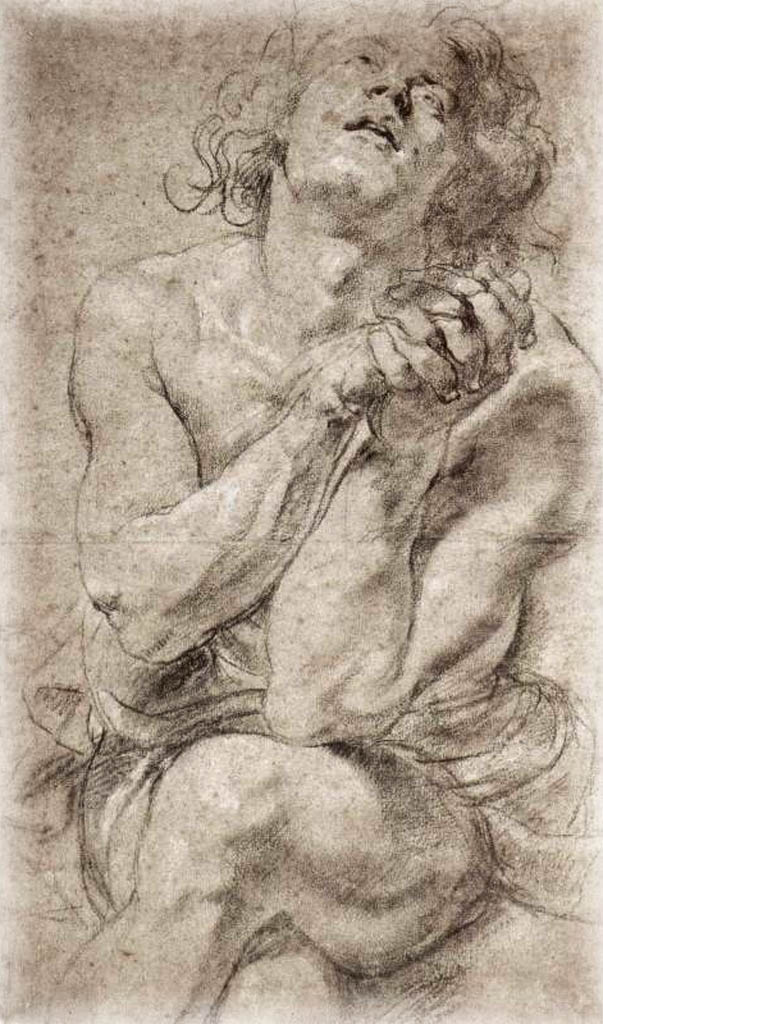 Rubens drawing forearm. Peter paul study of